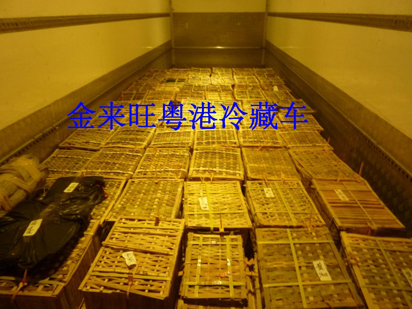 金來旺粵港冷藏車為中國大閘蟹走出國門而努力