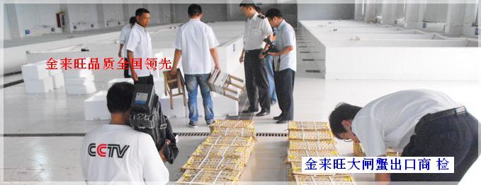 苏州阳澄湖大闸蟹金来旺品牌成长历史