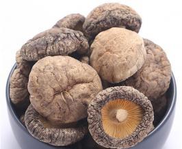 smooth shiitake mushroom