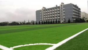 玉溪一中人造草坪足球场顺利竣工